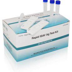Rapid ISAV Kit